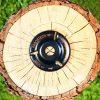 Die TURBOPlane Ist die leistungsfähigste Frässcheibe von Arbortech