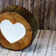 Dies ist eine selbst geschnitzte Ringsschale die mit Arbortech Holzwerkzeugen hergestellt wurde