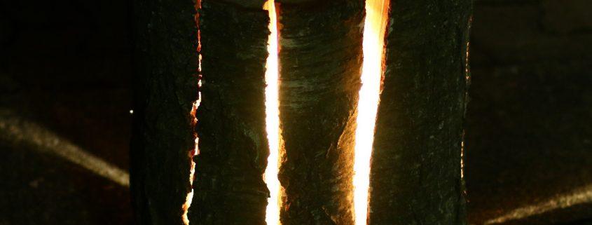 Stehlampe aus einem Birken Holzstamm bauen - Arbortech Shop