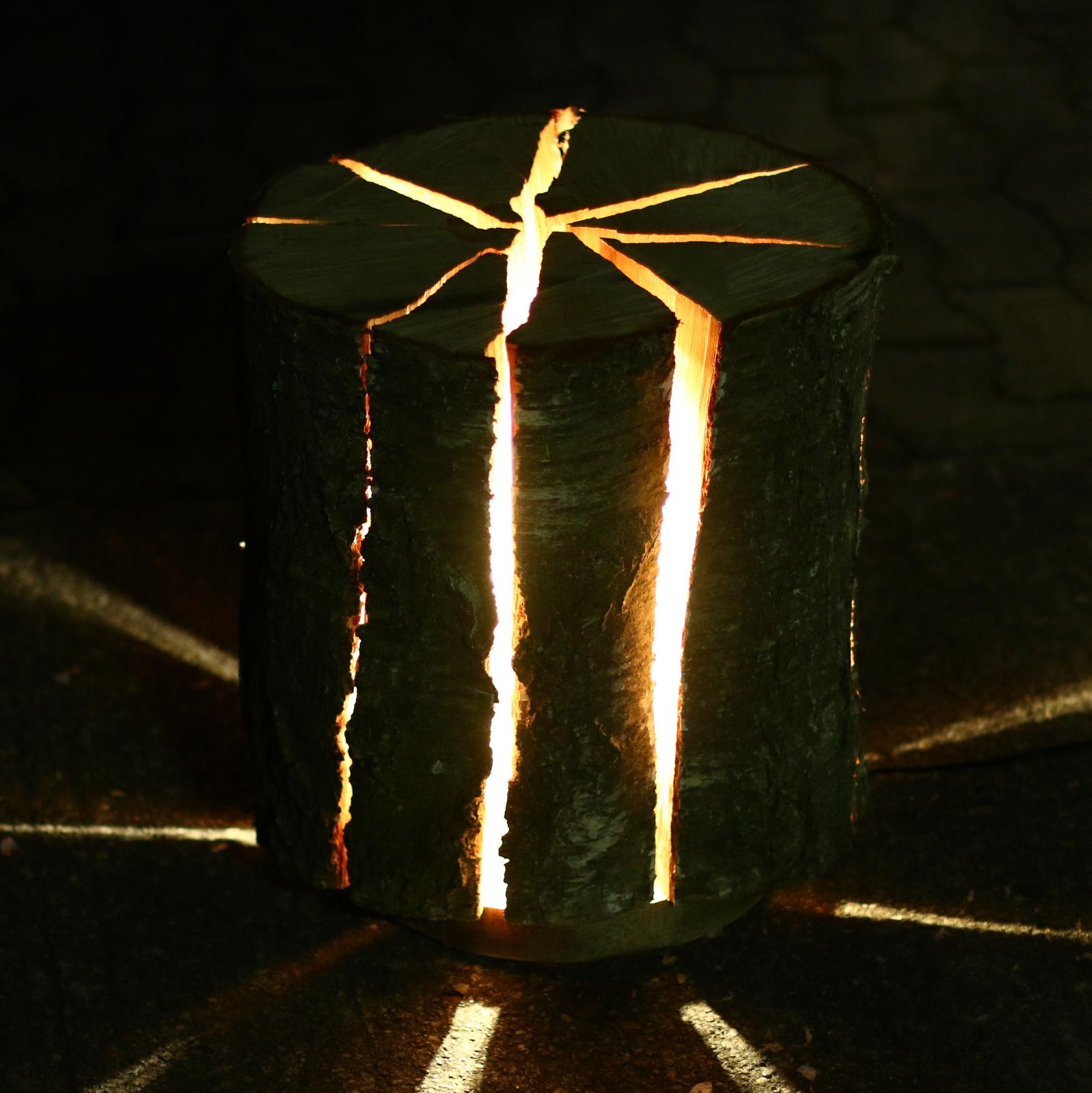 stehlampe aus einem birken holzstamm bauen arbortech shop. Black Bedroom Furniture Sets. Home Design Ideas