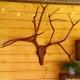 Dieses Hirschgeweih wurde mit arbotech Holzwerkzeug geschnitzt.